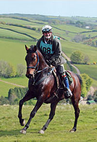 We are experienced endurance riders and can provide advice and a training base for Golden Horseshoe competitors